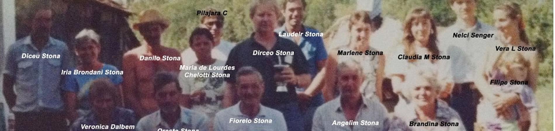 Ferramenta de busca da Família Stona